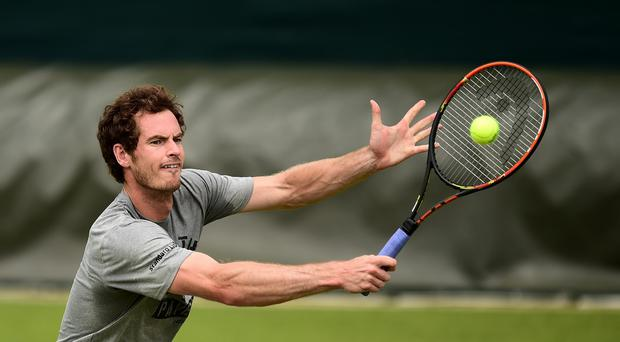 Andy Murray is aiming for his second Wimbledon title in three years