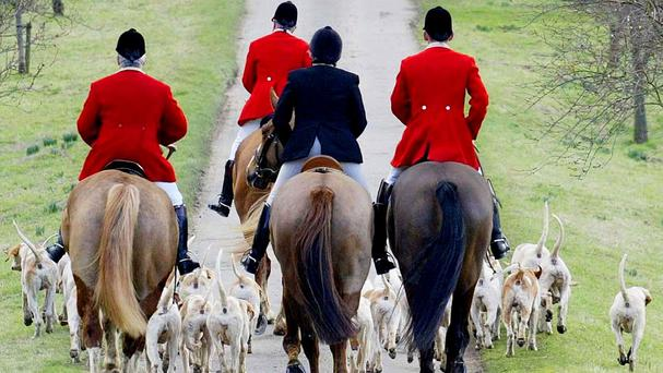 Celebrities including Ricky Gervais, Morrissey, Sadie Frost and Stella McCartney have called on MPs to keep the fox hunting ban intact