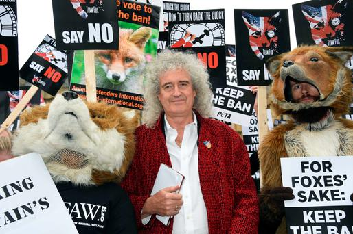 Brian May leads anti-fox hunting rally in London yesterday