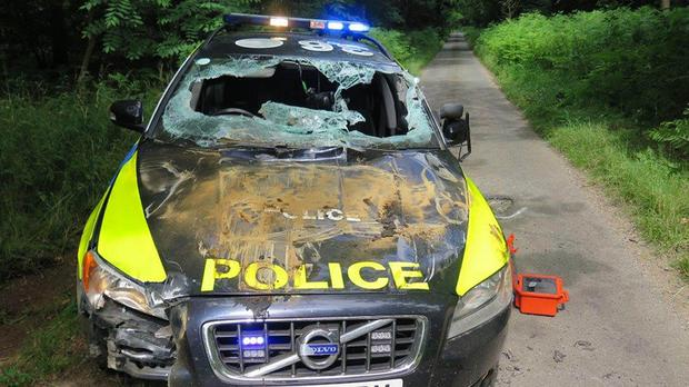 A Norfolk Police car was damaged in a low-speed chase involving a stolen dumper truck (Norfolk Police/PA)