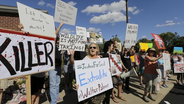 Protesters outside Walter Palmer's dental surgery in Minnesota (AP)