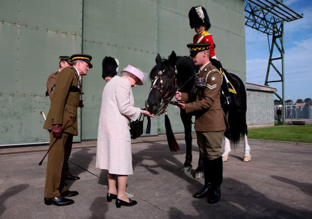 The Queen feeds Talavera the regimental drum horse