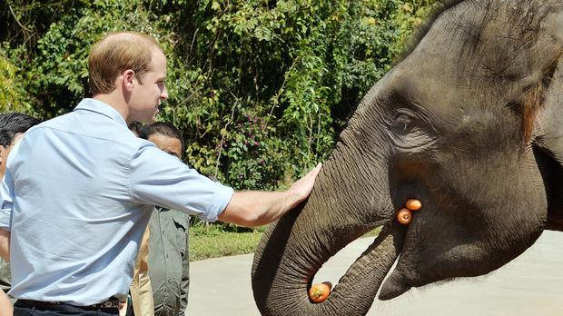 The Duke of Cambridge said tackling the illegal trade in wildlife will be a 'key test' of nations' ability to confront global challenges