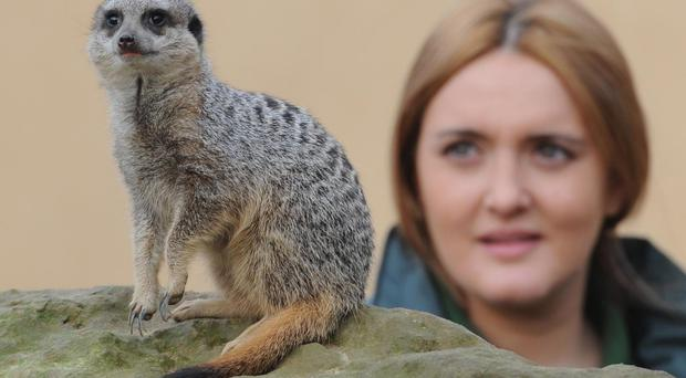 Caroline Westlake was working at London Zoo at the time of the incident