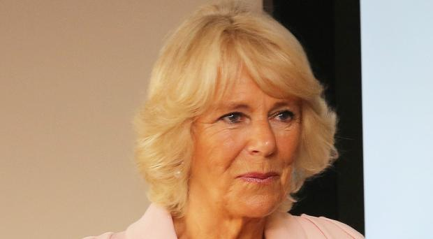 The Duchess of Cornwall said the number of sex assaults is shocking