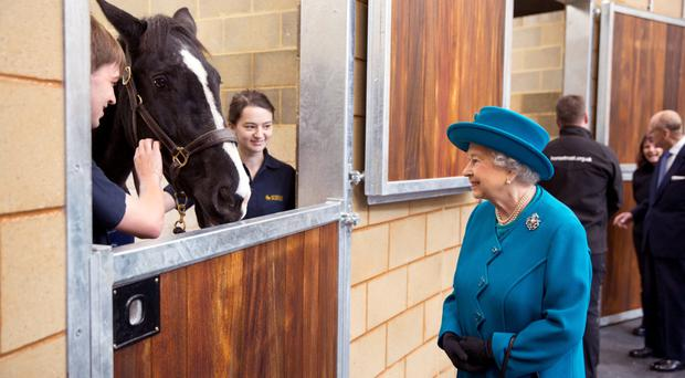 The Queen visits the Large Animals Clinical Skills Building during her visit to open the new School of Veterinary Medicine at the University of Surrey