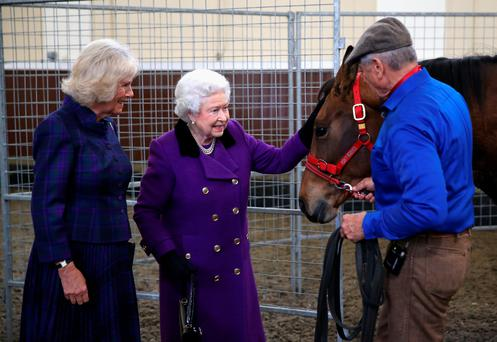 Duchess of Cornwall and the Queen attend a horse whispering demonstration by Monty Roberts