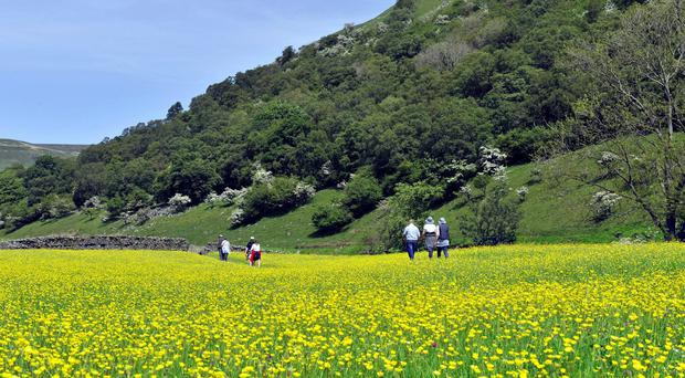 The Yorkshire Dales will be increased by almost 24% and the Lake District by 3%