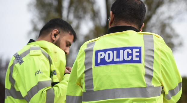 Hampshire Police said there was no 'wider threat to the public'
