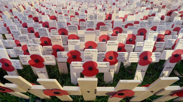 Poppies on crosses are placed in position in the grounds of Westminster Abbey in London ahead of Remembrance Sunday