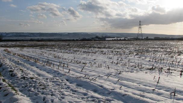 Southern areas will see highs of 6C but parts of Scotland will struggle to rise above freezing