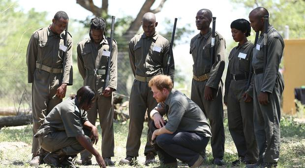 Prince Harry meets environmental crime investigations rangers who are gathering evidence in the hope of catching poachers
