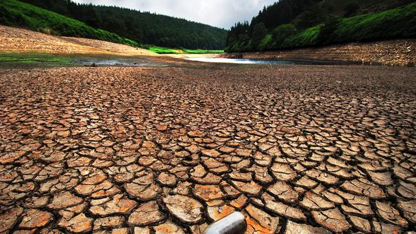 The impacts of rising temperatures such as drought are set to hit agricultural production, campaigners said
