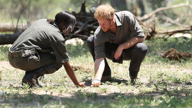 Prince Harry meets a student during his visit to Southern African Wildlife College