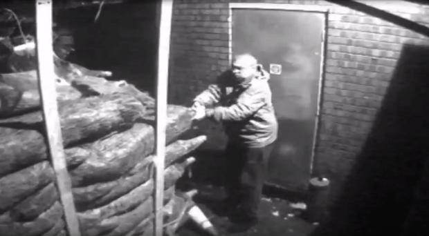 A still taken from CCTV of Christmas trees being stolen from a shop in Chorlton, Greater Manchester (Greater Manchester Police/PA)