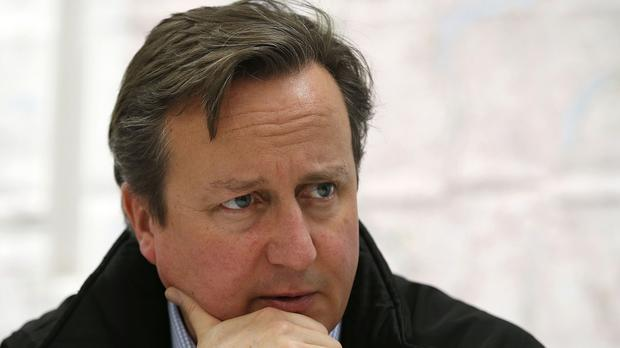 David Cameron is facing pressure from Eurosceptics in his party