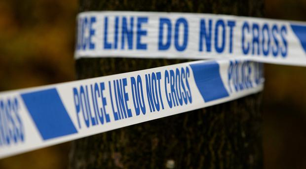 Police in Greenwich, south-east London, have arrested a 52-year-old man on suspicion of murder after a 64-year-old was fatally stabbed