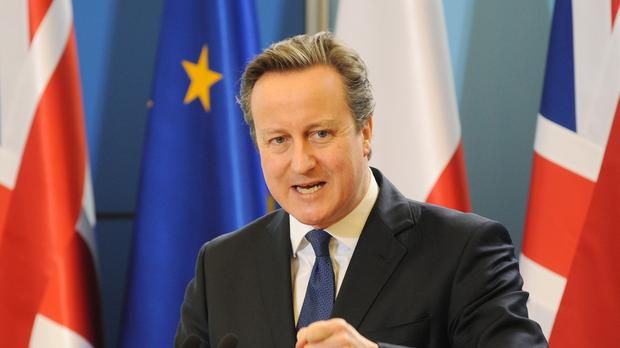 David Cameron has been under mounting pressure to suspend cabinet