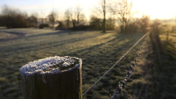 A frosty fence post at a farm near Touchen End, Berkshire
