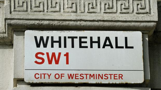 Whitehall mandarins are wary of pointing out failing government projects as they are trying to avoid damaging their careers, says a report