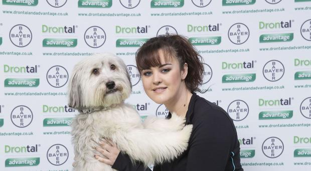 Ashleigh and Pudsey are no strangers to Crufts