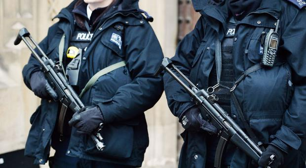 There will be 600 additional firearms officers for London, David Cameron said