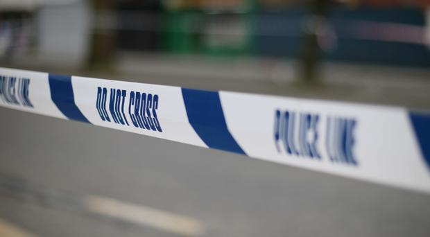 The bodies were found in a back garden in Hull