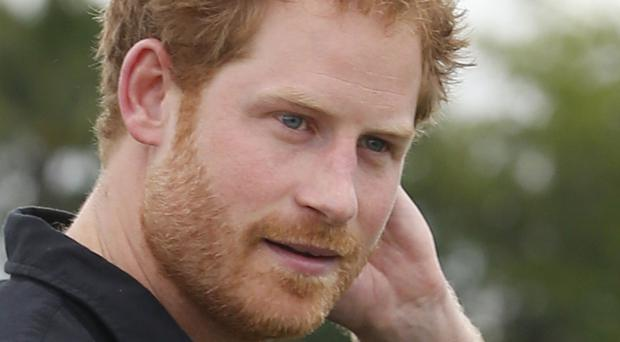 Prince Harry believes his mother, the late Diana, Princess of Wales, would probably have done many of the things he undertakes