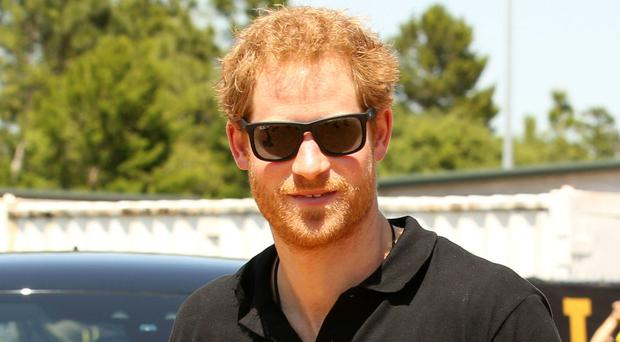 Prince Harry has not yet found a job that will complement his royal duties