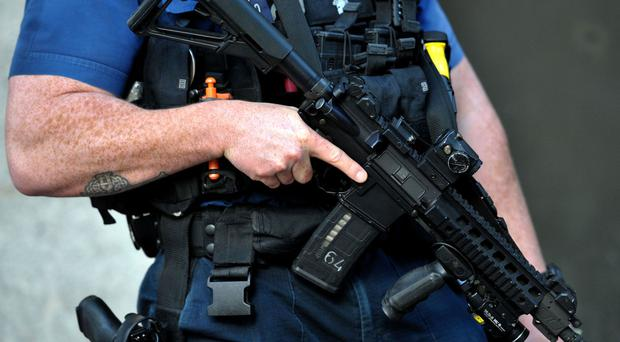 Dame Anne Owers hit back at fears about a national shortage of armed police