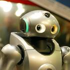 The researchers took inspiration from human responses to pain when developing their robot [File photo]