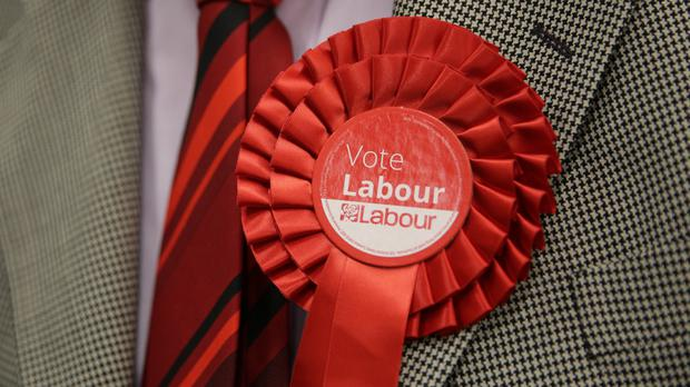 A Labour Party activist investigated in relation to allegations of anti-Semitism has had her suspension lifted