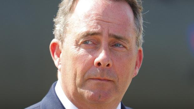 Liam Fox said immigration is a