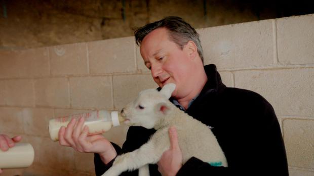 David Cameron on BBC's Countryfile TV show which focused on rural vote