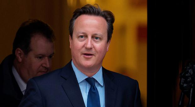 David Cameron is backing a Remain vote