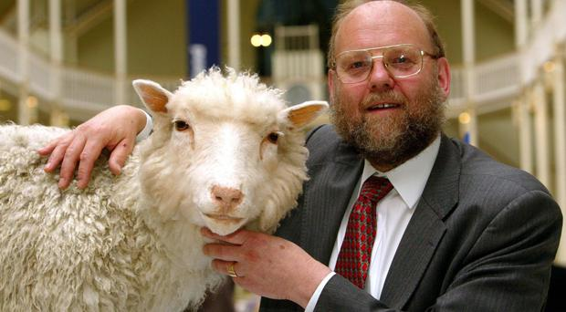 Professor Ian Wilmut of the Roslin Institute with Dolly, the world's first cloned sheep