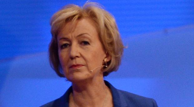 Energy minister Andrea Leadsom: My first task is to show how great we are as a nation – let's banish the pessimists