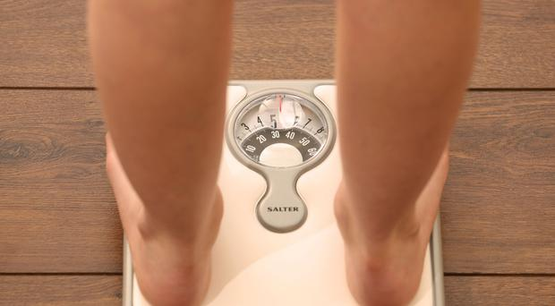 Councils say they plan to spend less money fighting obesity