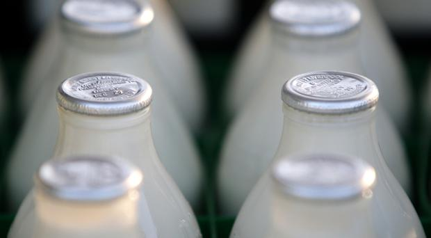 Calcium can be found in dairy products such as milk and cheese, as well as green leafy vegetables