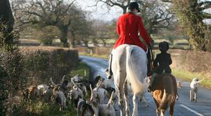 A new poll found that 73% of Conservative voters agree with the ban on fox hunting