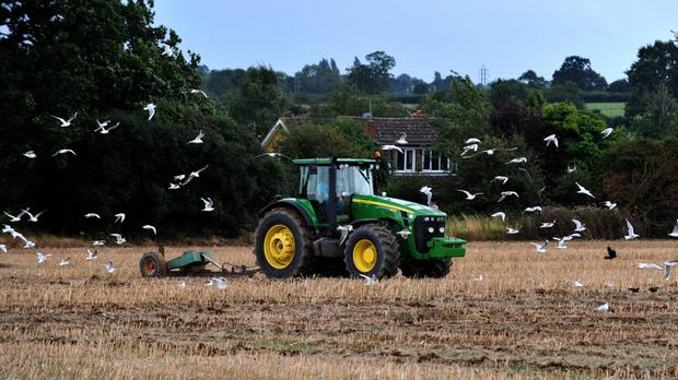 European Union farming subsidies should be replaced with policies that help nature across the UK countryside