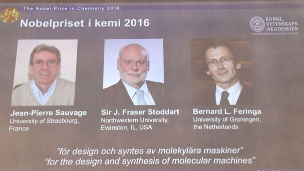 The Royal Academy of Sciences members reveal the winners of the Nobel Prize in chemistry, at the Royal Swedish Academy of Sciences, in Stockholm (Henrik Montgomery/TT via AP)