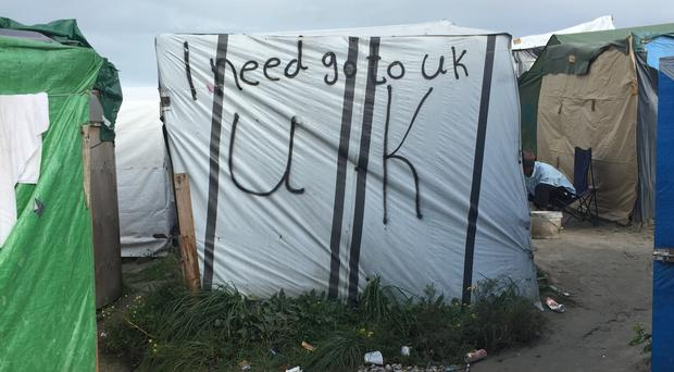 A shelter in the Jungle migrant camp in Calais, France