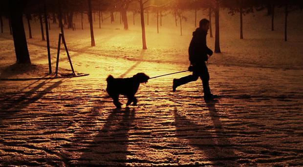 Pets must be kept on leads in 1,100 parks and public areas.