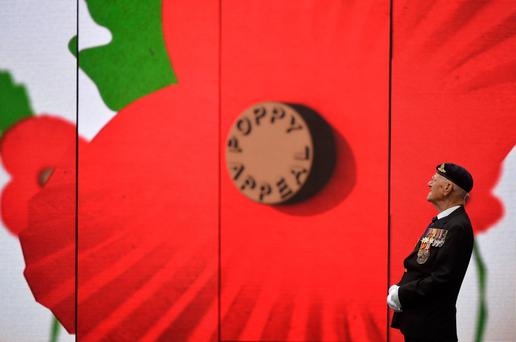 World War II veteran Garth Wright, (97), views a video installation unveiled by the Royal British Legion's Poppy Appeal in Paternoster Square in London