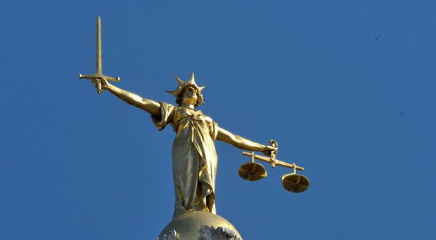 A man accused of sexually assaulting a woman after climbing into her home has been granted High Court bail
