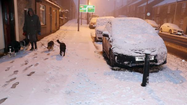 A man walks his dogs as snow falls in Tow Law in County Durham after wintry weather swept across northern England overnight