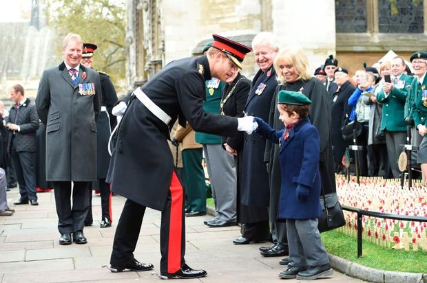 Prince Harry greets Harrison at Westminster Abbey's Field of Remembrance