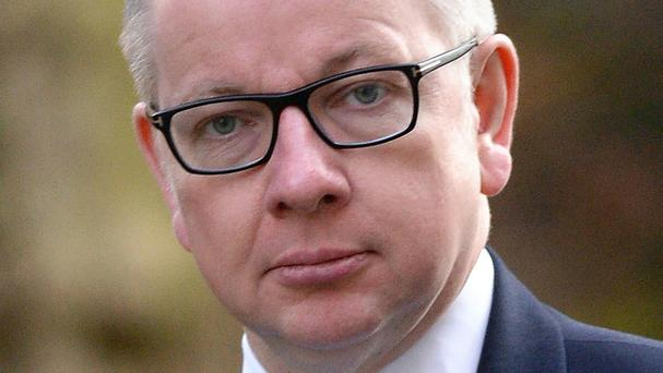 The Government needed to work to reduce the prison population, Michael Gove said