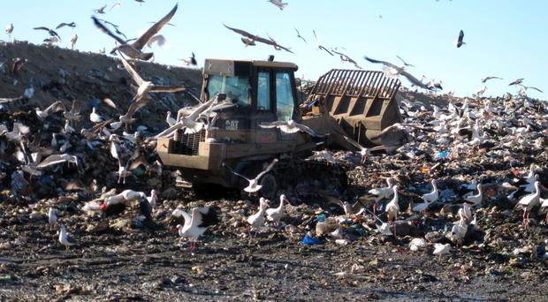 Waste Systems equipment allows companies to reduce landfill costs and secure revenue from recovered materials